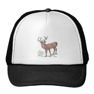 The Deer Hat