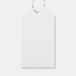 The Definition of Feminism Gift Tags