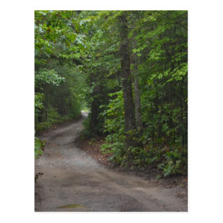 The Dirt Road in summer Postcard