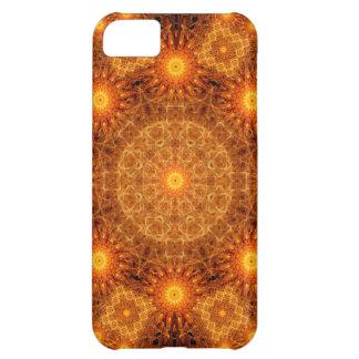 The Divine Matrix Mandala iPhone 5C Case