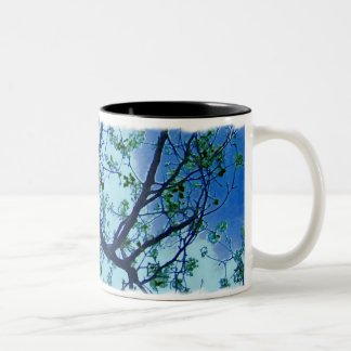 The Dogwood Mug