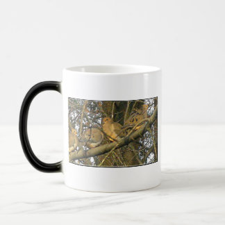 The Dovey Doves ♥ Coffee Mugs