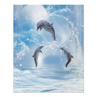 The Dreams Of Dolphins Poster