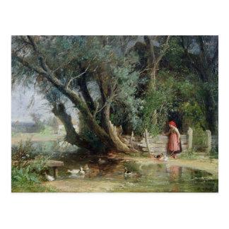 The Duck Pond Postcard