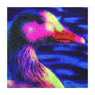 The Duck You See Canvas Print