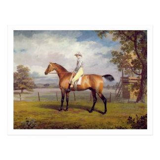 The Duke of Hamilton's Disguise with Jockey Up (oi Postcard