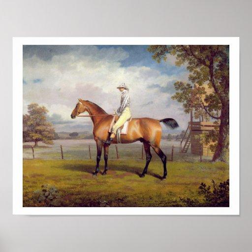 The Duke of Hamilton's Disguise with Jockey Up (oi Print