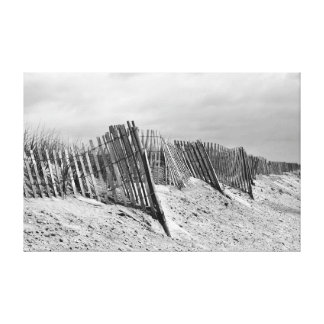 The Dune Fence Canvas Print