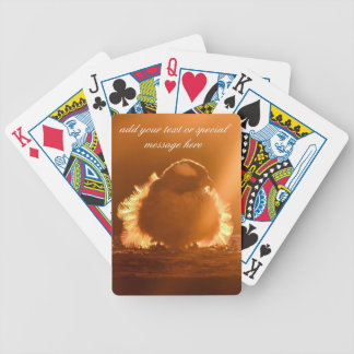 The early bird catches the worm bicycle playing cards