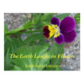 THE EARTH LAUGHS IN FLOWERS - VIOLA POSTCARD