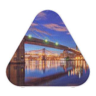 The East River, Brooklyn Bridge, Manhattan Speaker