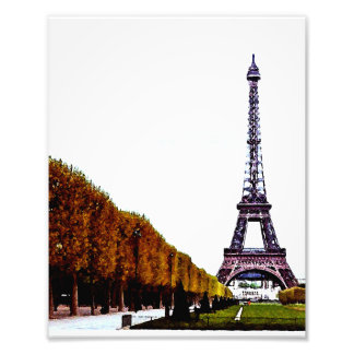The Eiffel Tower - Paris Photo