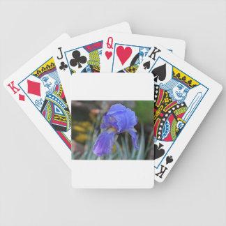 The Elusive Debutatante Poker Deck