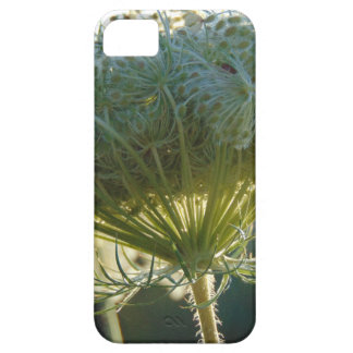 The End of Summer iPhone 5 Case