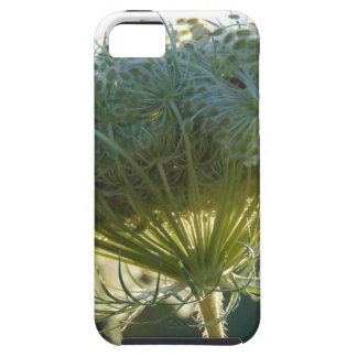 The End of Summer iPhone 5 Cases