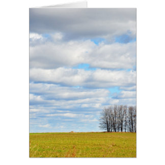 The end of the tree line greeting card