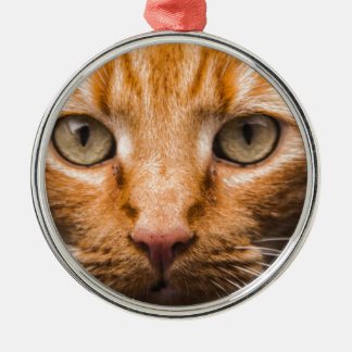 The Essence of a Cat's Look Silver-Colored Round Ornament