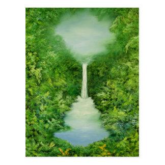 The Everlasting Rain Forest 1997 Postcard