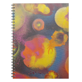 The Evolving Micro-Universe Notebook