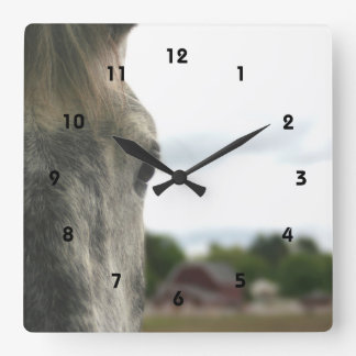 The Eye Of A Horse Animal Square Wall Clock
