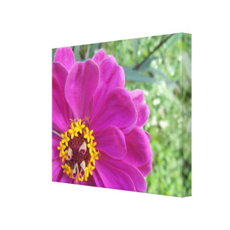 The face of a flower canvas print