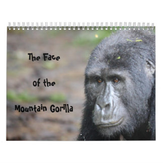 The Face of the Mountain Gorilla/ No US Holidays Wall Calendar