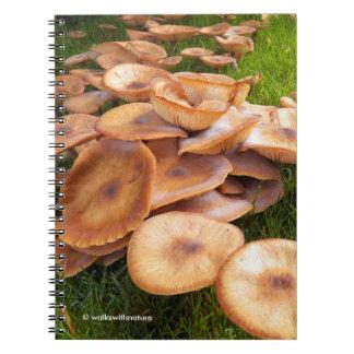 The Fall of Mushrooms Notebooks