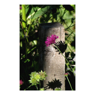 The Fence Post Stationery