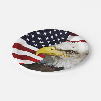 The flag of america with eagle paper plate