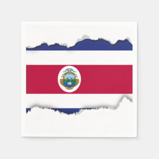 The Flag of Costa Rican Paper Napkin