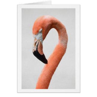 The Flamingo Card