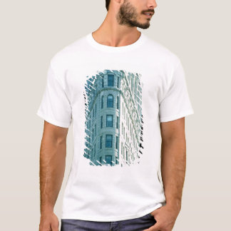 The Flatiron Building (photo) 2 T-Shirt