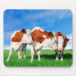 The flirting cows mouse pad