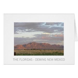 THE FLORIDAS - DEMING NEW MEXICO CARD