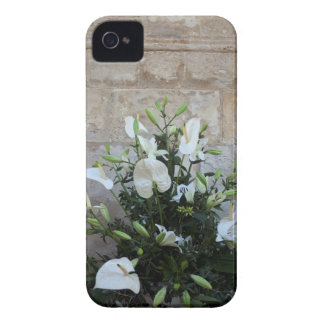 The flowers iPhone 4 cover
