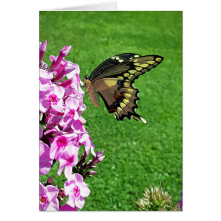 The Fluttering Giant - Greeting Card