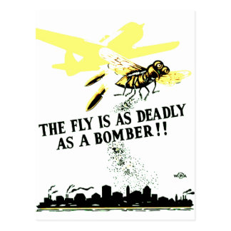 THE FLY IS AS DEADLY AS A BOMBER ! POSTCARD