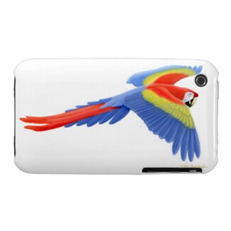 The Flying Scarlet Macaw Parrot iPhone 3 Case