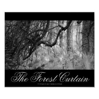 The Forest Curtain Poster