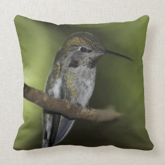 The forest Faerie Pillows