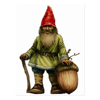 THE FOREST GNOME POSTCARD