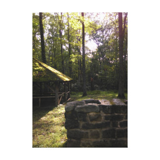The Forest of Pennsylvania Canvas Print