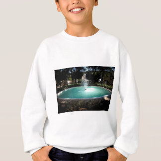 The fountain sweatshirt