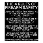 The Four Rules of Firearm Safety - Poster