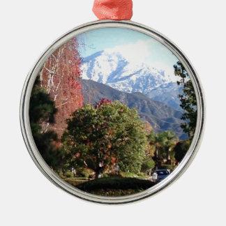 The Four Seasons Metal Ornament