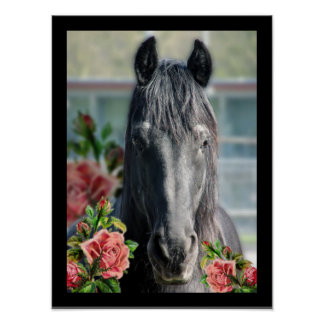 The Friesian - Portrait Poster