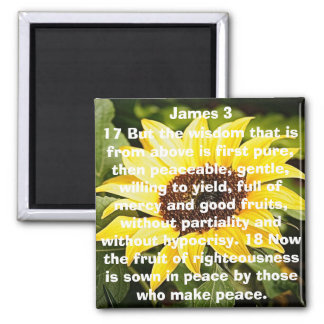 the fruit of righteousness bible verse sunflower magnet