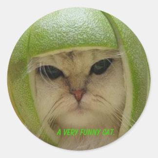 The funny cat sticker. classic round sticker