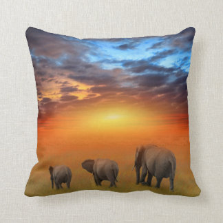 The Future is Bright Throw Pillow