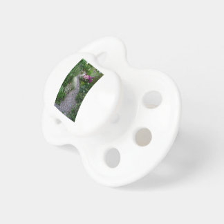 The Garden Path Pacifier